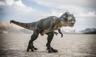 t-rex-871535